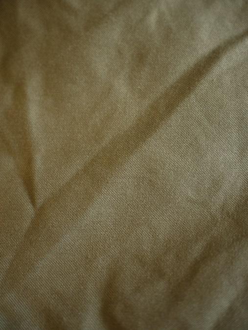 fob shorts sP1370499.JPG