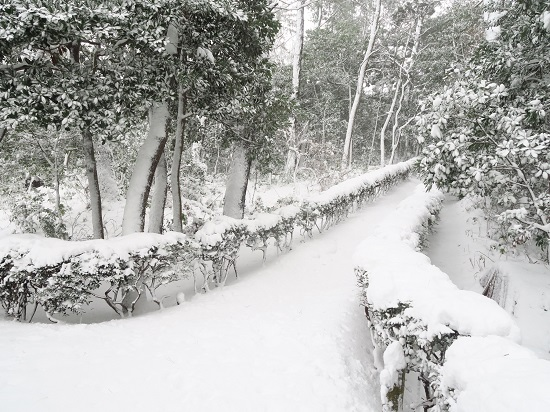 snow ride (10).JPG