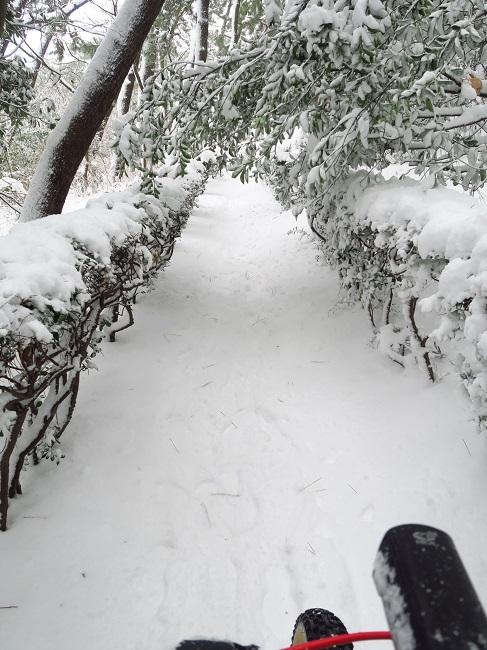 snow ride (11).JPG
