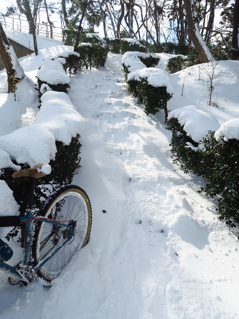 snow ride (26).JPG