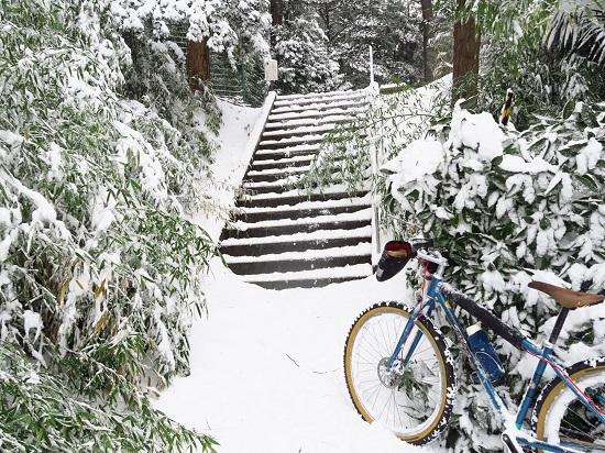 snow ride (3).JPG