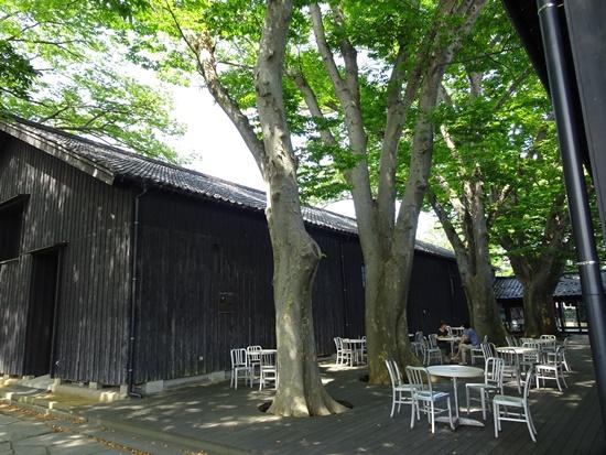 yamagata sDSC04808.JPG